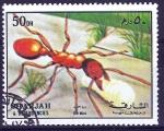 Sellos de Asia - Emiratos Árabes Unidos -  SHARJAH. Insectos. Hormiga.