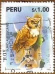 Stamps America - Peru -  BUHO AMERICANO