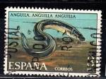 Sellos de Europa - España -  E2405 FAUNA : Anguila (148)