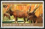 Stamps Senegal -  SENEGAL - Parque Nacional Niokolo-Koba