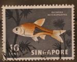 Sellos de Asia - Singapur -  rasbora