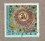 Sellos de Europa - Polonia -  Passiflora quadrangularis