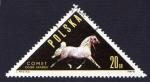Stamps of the world : Poland :  COMET OGIER ARABSKI