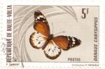 Stamps Africa - Burkina Faso -  ALTO VOLGA - Mariposa 2