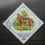 Stamps Mongolia -  caballo