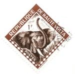 Stamps Africa - Burkina Faso -  ALTO VOLGA - Elefante