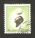 Stamps : Asia : United_Arab_Emirates :  Manama - deportista