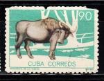 Sellos del Mundo : America : Cuba : Búfalo