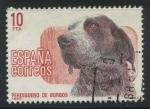 Sellos del Mundo : Europa : España : E2711 - Perdiguero de Burgos