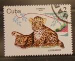 Stamps Cuba -  leopardo