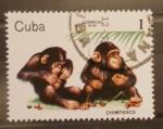 Sellos del Mundo : America : Cuba : chimpace