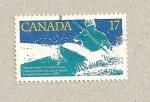 Sellos de America - Canadá -  Campeonatos de kayaks