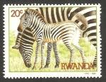 Sellos de Africa - Rwanda -  fauna cebras