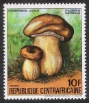 Stamps Africa - Central African Republic -  SETAS-HONGOS: 1.127.012,00-Phlebopus sudanicus