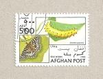 Sellos de Asia - Afganistán -  Zerynthia polysema