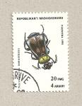 Stamps Madagascar -  Necrophorus tomentosus