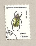 Sellos de Africa - Madagascar -  Dynastes tityus