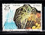 Sellos de Europa - España -  E2535 Actinia (276)