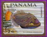 Stamps : America : Panama :  Balistipus Undulatus