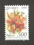 Stamps Europe - Belarus -  630 - lis, flor de jardín
