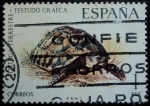 Stamps Spain -  Tortuga terrestre / Testudo graeca