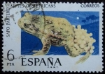 Sellos de Europa - España -  Sapo partero / Alytes obstetricans