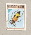 Stamps Africa - Togo -  Semanotus rassicus