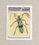 Stamps Africa - Togo -  Rosalia alpina