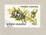 Sellos de Europa - Rumania -  Hedobis imperialis