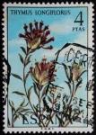 Sellos de Europa - España -  Thymus logiflorus