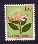 Stamps : Africa : Rwanda :  PROTEA