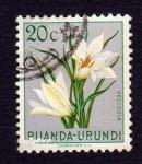 Stamps : Africa : Rwanda :  VELLOZIA