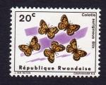 Stamps : Africa : Rwanda :  COLOTIS AURIGINEUS BTLR.