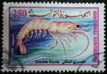 Stamps Africa - Tunisia -  Camarón Real