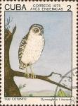 Sellos de America - Cuba -  Aves Endémicas. Siju Cotunto, Gymnoglaux lawrenci.