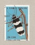 Stamps São Tomé and Príncipe -  Taladro de California del laurel