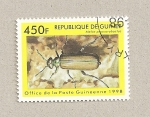 Sellos de Africa - Guinea -  Meloe proscarabactus