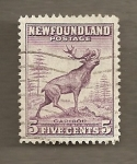 Stamps America - New Foundland -  Ciervo