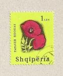 Stamps Albania -  Papaver rhoeas