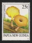 Stamps Papua New Guinea -  SETAS-HONGOS: 1.208.001,00-Lentinus umbrinus