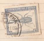 Stamps : America : Chile :  Centenario del libro De Gay 1844-1944