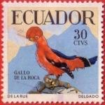 Stamps : America : Ecuador :  Gallo de la Roca