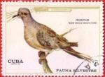 Stamps : America : Cuba :  Fauna Silvestre