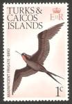 Sellos del Mundo : America : Islas_Turcas_y_Caicos : 312 - pájaro magnificent frigate