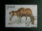 Stamps Asia - Kyrgyzstan -  Caballos.
