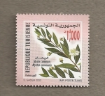 Stamps Africa - Tunisia -  Mirta común