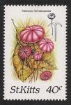 Stamps America - Saint Kitts and Nevis -  SETAS-HONGOS: 1.216.002,00-Marasmius haematocephalus