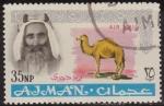 Sellos de Asia - Emiratos Árabes Unidos -  Ajman 1965 Sello * C3 Sheik Rashid bin Humaid al Naimi y Camello 35np Correo Aereo Preobliteré Matas