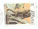 Stamps Spain -  Lagarto Gigante de el Hierro