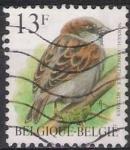 Sellos de Europa - Bélgica -  Belgica 1993 Scott 1446 Sello º Aves Oiseaux Moineau Domestique 13fr Belgique Belgium